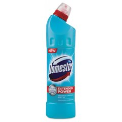 Domestos Atlantic Fresh 750ml