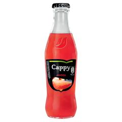 Cappy VL 0,25l Jahoda 35%