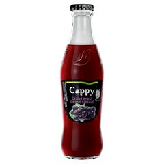Cappy VL 0,25l Černý Rybíz 25%